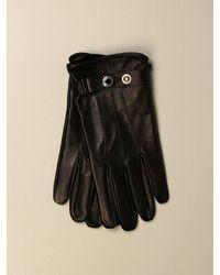 Alexander McQueen Gloves - Black