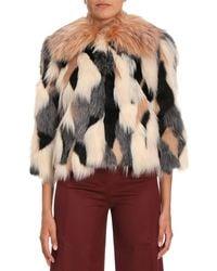 Elisabetta Franchi - Cropped Faux Fur Jacket - Lyst