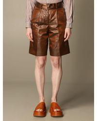 Peserico Short - Brown
