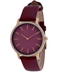 Timex Metropolitan Watch - Multicolor