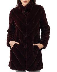 Love Token Misty Coat - Black