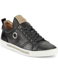Alessandro Dell'acqua Perforated Leather Lace-up Trainers - Grey