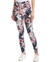Hue Gala Floral Velvet Legging - Pink