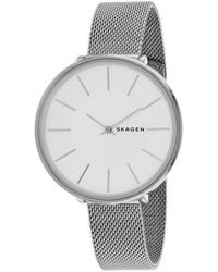 Skagen Denmark Karolina Watch - Metallic