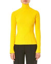 Carolina Herrera Raglan Sleeve Knit Turtleneck Top - Yellow