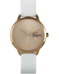 Lacoste Watch - Multicolor