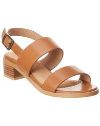 Seychelles Mavericks Leather Sandal - Brown