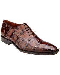 Belvedere Walter Alligator Dress Shoe - Brown