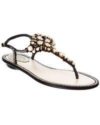 Rene Caovilla Embellished Sandal - Black