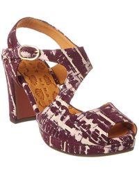 Chie Mihara Nururu Suede Sandal - Purple