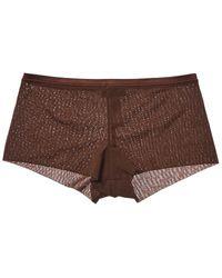 Cosabella Soire Instinct Hotpant - Brown