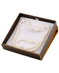 Splendid Rhodium Plated 7-8mm Freshwater Pearl Set - Multicolour