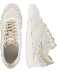Rehab , Sneaker - Mehrfarbig