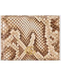 Gucci - グッチ〔GGマーモント〕パイソン カードケース(コイン&紙幣入れ付き) - Lyst