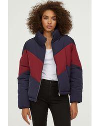 H&M - Padded Jacket - Lyst