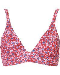 Xirena Indy Bikini Top - Red