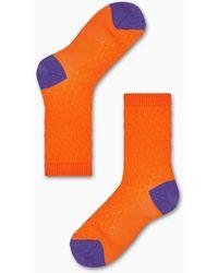 Happy Socks Livia Crew Sock - Meerkleurig