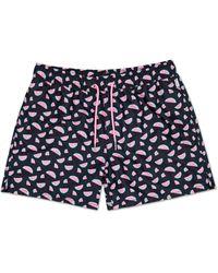 Happy Socks Watermelon Swim Shorts - Blauw