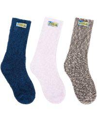 Loewe Knitted Socks (pack Of 3) - Multicolour