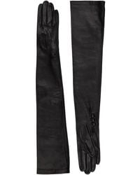 Harrods Polly Long Leather Gloves - Black