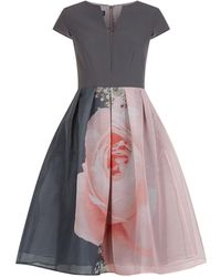 Ted Baker - Noura Blenheim Palace Midi Dress - Lyst