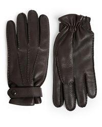 Eleventy Deerskin Gloves - Brown