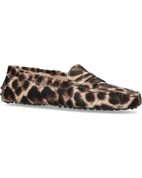 Tod's - Leopard Haircalf Loafers - Lyst