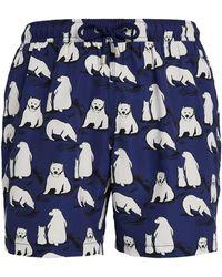 BLUEMINT Polar Bear Arthus Swim Shorts - Blue