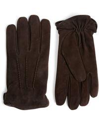 Eleventy Suede Gloves - Brown