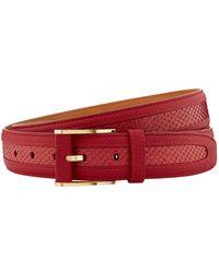 Zilli Leather-python Skin Belt - Red