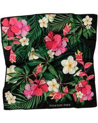 Halcyon Days Silk Tropical Flower Print Scarf - Black