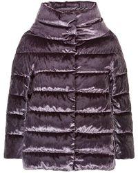 Herno - Velvet Padded Jacket - Lyst