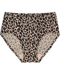 Chantelle Soft Stretch Leopard-print High-rise Briefs - Brown