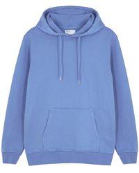 COLORFUL STANDARD Blue Hooded Cotton Sweatshirt