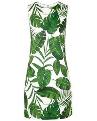 Alice + Olivia - Coley Palm Leaf-print A-line Shift Dress - Lyst