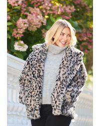 Popski London Theodora - Leopard Short - Multicolour