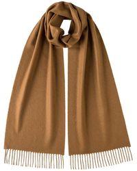 Johnstons of Elgin Classic Cashmere Scarf Dark Camel - Brown