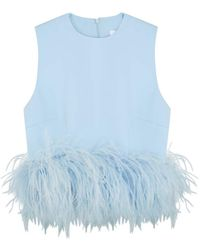 16Arlington Dickinson Light Blue Feather-trimmed Top