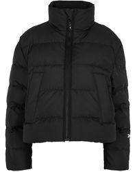 Reebok X Victoria Beckham Black Quilted Cropped Twill Jacket