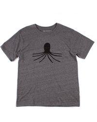 Mollusk Octopus Tee - Gray