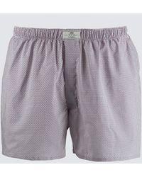 Hawes & Curtis Curtis Geometric Circles Cotton Boxer Shorts - Multicolor