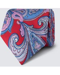 Hawes & Curtis Bold Paisley Tie - Blue