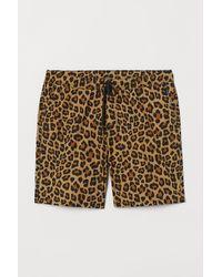 H&M Patterned Cotton Shorts - Natural