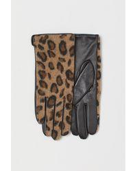H&M Leren Handschoenen - Zwart