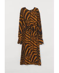 H&M - Zebra-striped Dress - Lyst