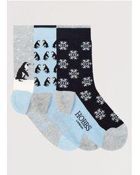 Hobbs Penguin Sock Set - Blue