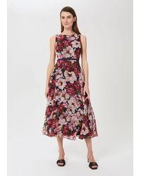 Hobbs Petite Carly Dress - Pink