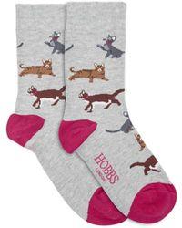 Hobbs Cat All Over Sock - Grey