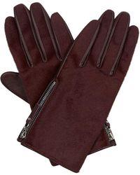 Hobbs - Nadine Glove - Lyst