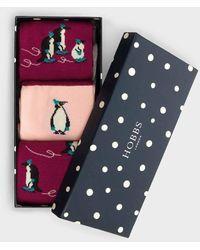 Hobbs Penguin Sock Set - Pink